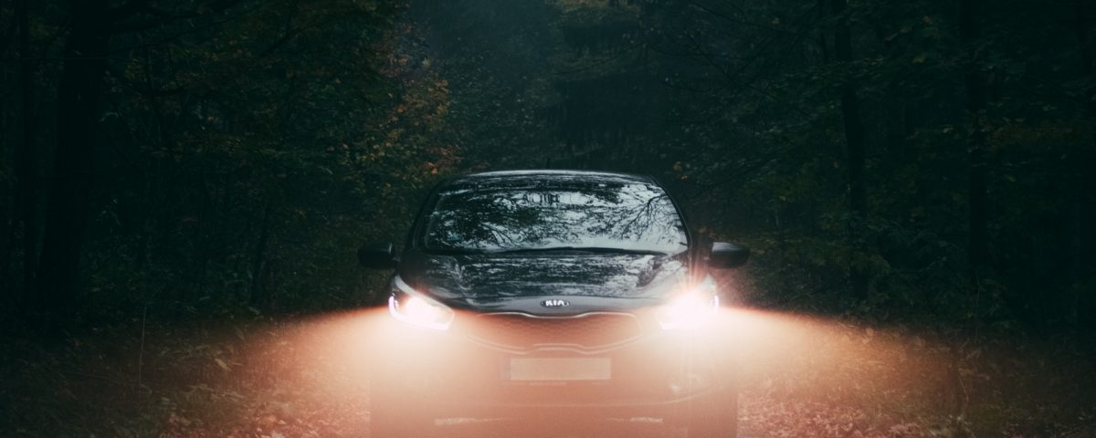 Black BMW Car With Its Head Lights On In Forest Covered With Fog