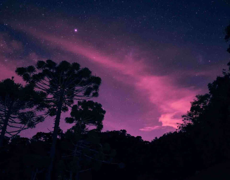 Purple Sky And Silhouettes Of Mountains & Trees