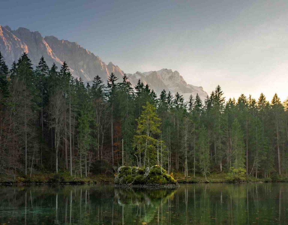Beautiful Lakes With Stunning Tree Line
