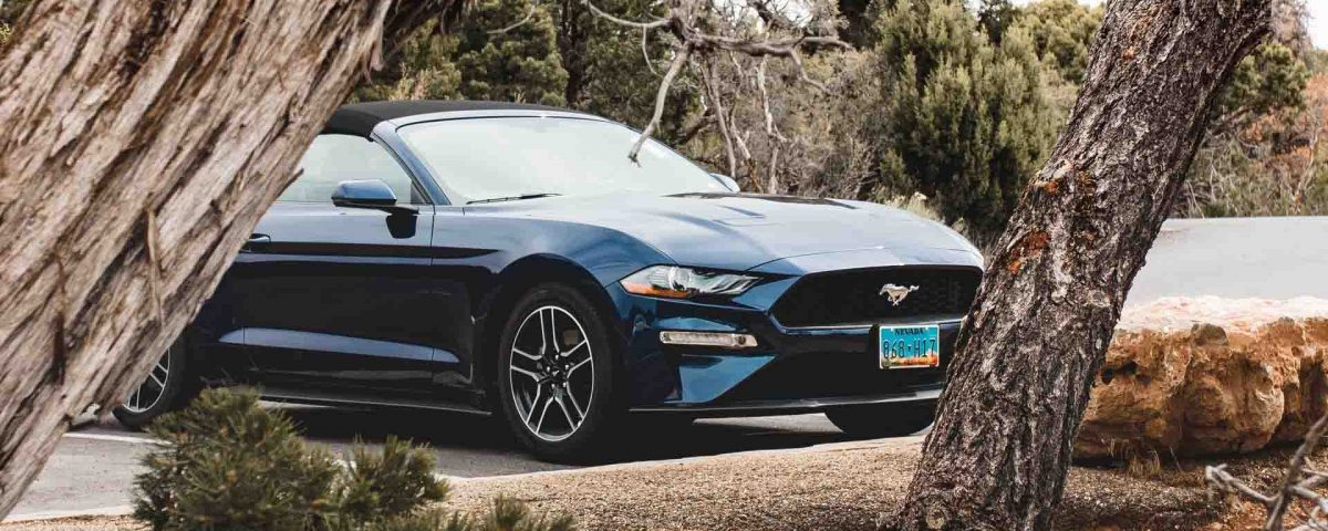 Mustang Gt Blue Ford Car Wallpaper Hd Wallpapers Stores