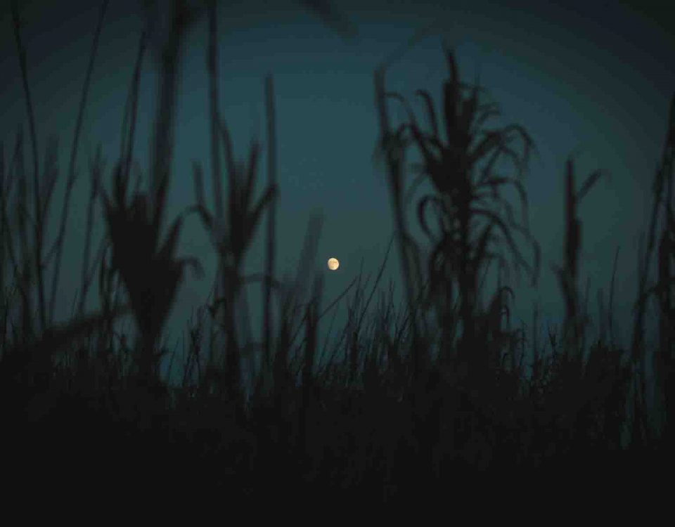Moon Photography In Night