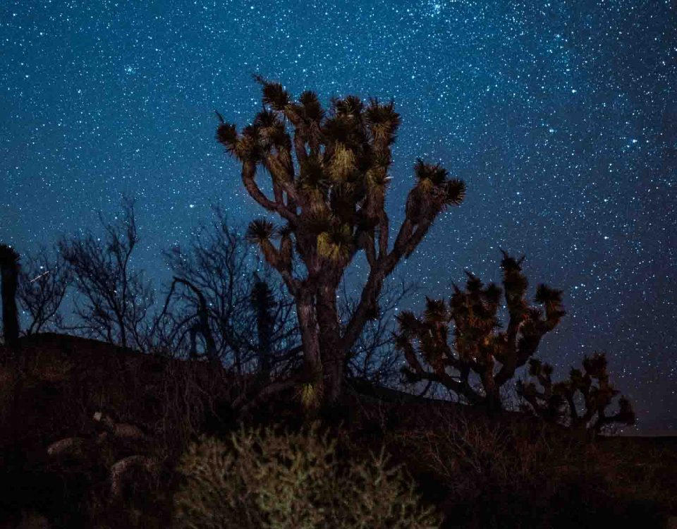 Yucca Mountain In Night With Starry Sky